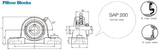 FSB-SAP200
