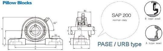 FSB-SAP-PASE200